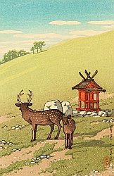 Deer and Shrine