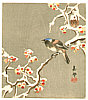 Biho Takahashi 1873-? - Bird on Snow Covered Berry Branch