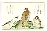 Utamaro Kitagawa 1750-1806 - Pheasant and Wagtail