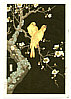 Hodo Nishimura active 1930s - Plum Blossoms and Canaries