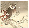 Biho Takahashi 1873-? - Owl and Cherry Blossoms