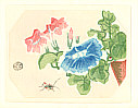 Eiichi Kotozuka 1906-1979 - Morning Glories and Cricket