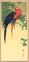 Sozan Ito 1884-? - Blue and Red Macaws
