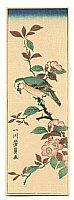 Yoshikazu Utagawa active ca.1850-70 - Bird and Cherry