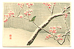 Hiroaki Takahashi 1871-1945 - Bush Warbler and Snowy Plum Tree (post card size)