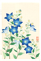 Nisaburo Ito 1910-1988 - Blue Baloonflower