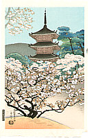 Benji Asada 1899-1984 - Cherry Blossoms