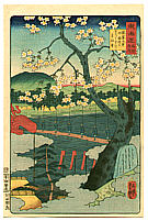 Yoshitsuya Koko 1822-1866 - Cherry Blossoms - The Scenic Places of Tokaido