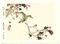 Bairei Kono 1844-1895 - Japanese White Eye and Nishikigi