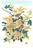 Shizuo Ashikaga fl.ca. 1950s - Birds and Maple