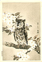 Eiichi Kotozuka 1906-1979 - Owl and Cherry Blossoms