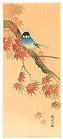 Sozan Ito 1884-? - Blue Bird and Red Maple