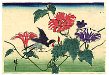 Hiroshige II Utagawa 1829-1869 - Bird on Morning Glories