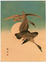 Bairei Kono 1844-1895 - Geese and the Moon