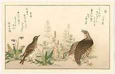Utamaro Kitagawa 1750-1806 - Quail and Lark