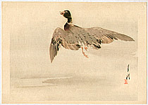 Gekko Ogata 1859-1920 - Flying Mallard