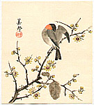 Biho  active  ca. 1900 - Bird on Branch