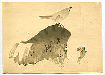 Unknown - Bird and Flowers