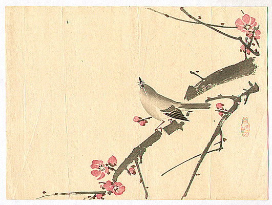 Unknown - Bush Warbler and Plum