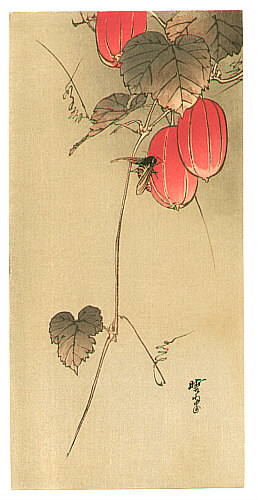 Gyosui Kawanabe 1868-1935 - Bee and Red Fruits