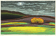 Waichi Hayashi born 1951 - Field under the Full Moon