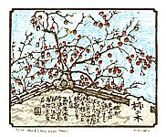 Eimei Machida born 1959 - Persimmon Tree