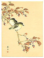 Hobun Kikuchi 1862-1918 - Japanese White-eyes on Cherry Branch