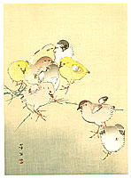 Hobun Kikuchi 1862-1918 - Pastel Chicks