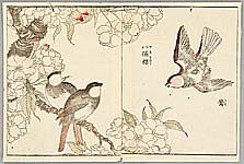 Shigemasa Kitao 1739-1820 - Birds and Cherry