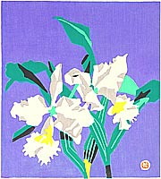 Yuzaburo Kawanishi born 1923 - Cattleya