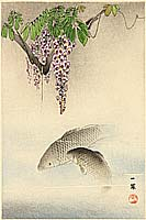 Ippo Mori 1798-1871 - Carp and Wisteria