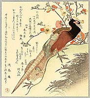 Shumman Kubo 1757-1820 - Two Pheasants and Plum