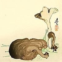 Wild Mushrooms - By Shibata Zeshin