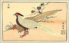 Masayoshi Kitao 1764-1824 - Two Exotic Birds