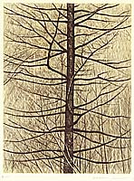 Shigeru Kimura born 1928 - Tree