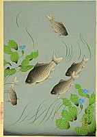 Bakufu Ono 1888-1976 - Crucian Carp