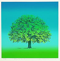 Yasunori Oshima born 1944 - Elm 1