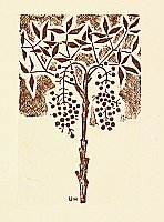 Unichi Hiratsuka 1895-1997 - Nandin Tree - Hanga Vol.8