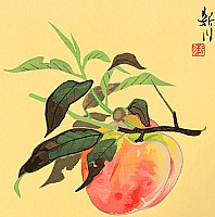 Shinsen Nishino fl.ca. 1960-90s - Peach