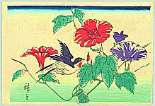 Hiroshige II Utagawa 1829-1869 - Bird and Morning Glories