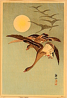 Sozan Ito 1884-? - Geese and the Moon