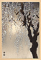 Eiichi Kotozuka 1906-1979 - Drooping Cherry Blossoms