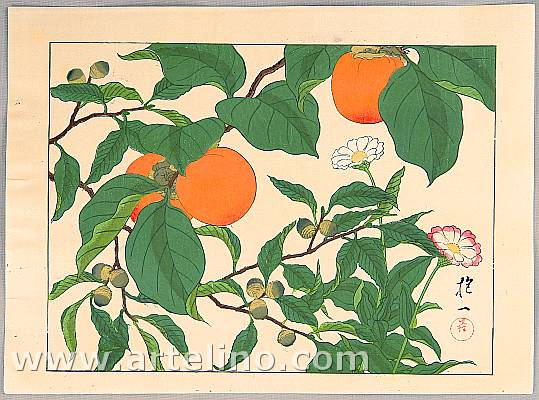 Hoitsu Sakai 1761-1828 - Persimmons and Flowers
