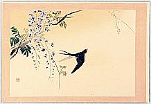 Hanko Kajita 1870-1917 - Twelve Months of Japan, Birds and Plants - Swallow and Wisteria