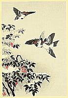 Koitsu Tsuchiya 1870-1949 - Sparrows and Snow Covered Nandin