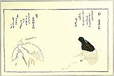 Utamaro Kitagawa 1750-1806 - Cormorant and Herons - Myriad Birds Compared in Humorous Verse