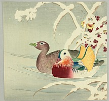 Chikuseki  active ca. 1900 - Mandarin Ducks