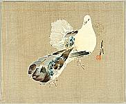 Gekko Ogata 1859-1920 - Two Pigeons