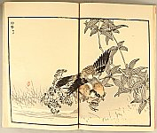 Bairei Kono 1844-1895 - Birds and Flowers - book