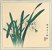 Chikuseki  active ca. 1900 - White Daffodils